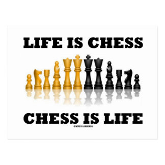 Life Is Chess Chess Is Life (Reflective Chess Set) Postcard