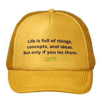 Life is full of things. cap