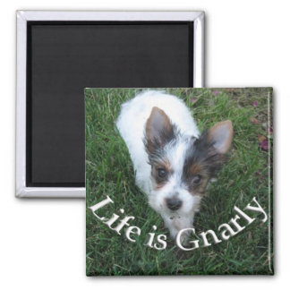 Life is Gnarly Square Magnet