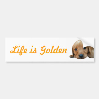Life is Golden Bumper Sticker