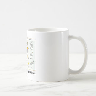 Life Is Just Budding With Potential (Bud Types) Basic White Mug