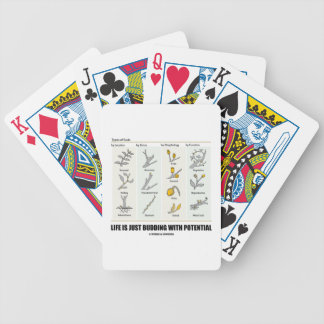 Life Is Just Budding With Potential (Bud Types) Card Deck