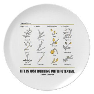 Life Is Just Budding With Potential (Bud Types) Dinner Plates