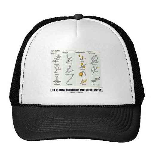 Life Is Just Budding With Potential (Bud Types) Hats