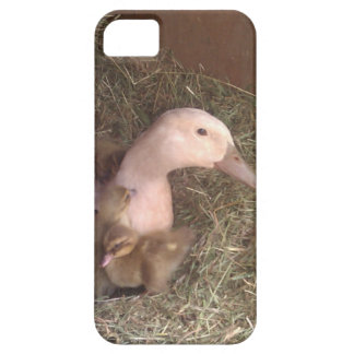 Life is just ducky iPhone 5 covers