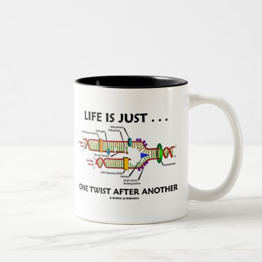 Life Is Just ... One Twist After Another (DNA) Mugs