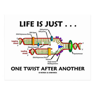 Life Is Just ... One Twist After Another (DNA) Postcard