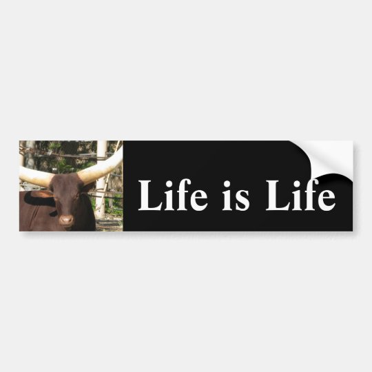 Life is Life     Bumper Sticker