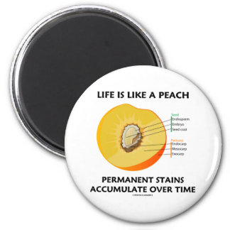 Life Is Like A Peach Permanent Stains Accumulate Magnets