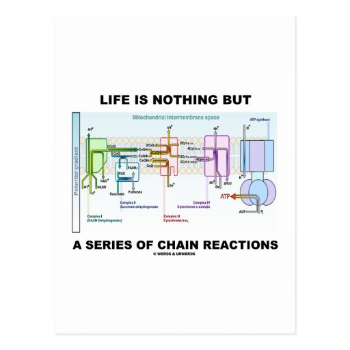 Life Is Nothing But A Series Of Chain Reactions Post Card
