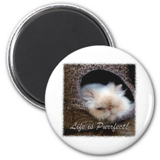 Life is Purrfect 6 Cm Round Magnet