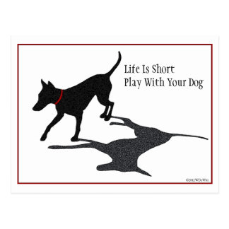 Life Is Short Play With Your Dog Post Card