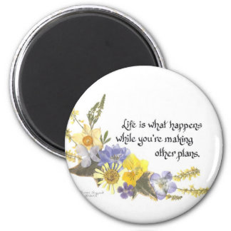 Life is what happens magnets