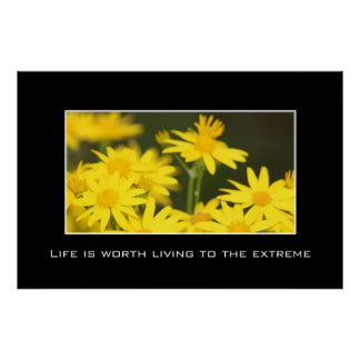 Life is worth living to the fullest poster