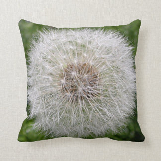 Life of a Dandelion Cushion