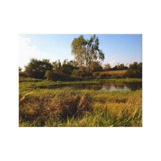 Life on the Pond (2) Canvas Print