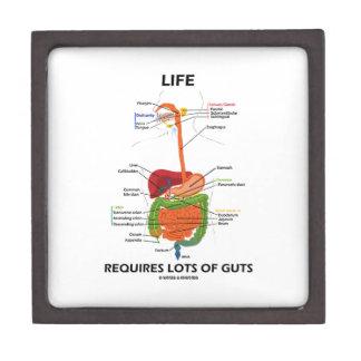 Life Requires Lots Of Guts (Digestive System) Premium Keepsake Box