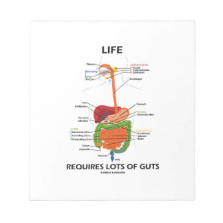 Life Requires Lots Of Guts (Digestive System) Scratch Pad