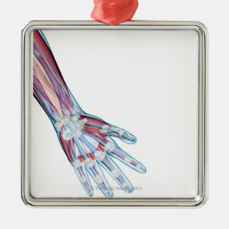 Ligaments in the Hand Silver-Colored Square Decoration