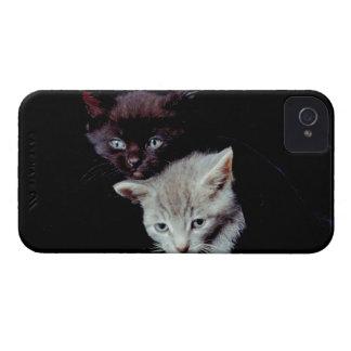 Light and Dark Kittens Case-Mate iPhone 4 Case