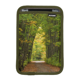 Light At The End Of A Tunnel Of Trees iPad Mini Sleeve