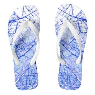 Light blue background with thorny branches flip flops