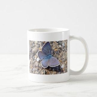 Light blue butterfly coffee mugs