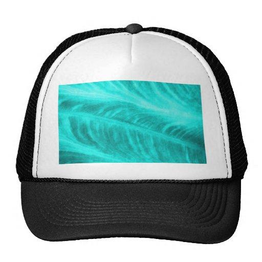 Light Blue Elephant Ear Texture Hats