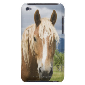 Light Brown Horse Barely There iPod Covers