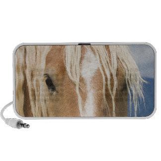 Light Brown Horse Travelling Speaker