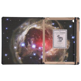Light Echo ..DODO iPad Folio Case
