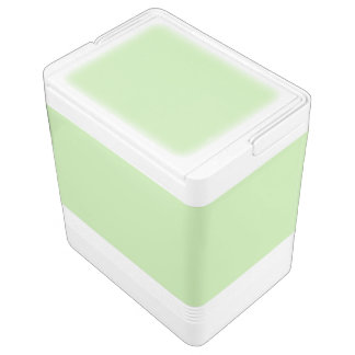 Light Green Igloo Cool Box