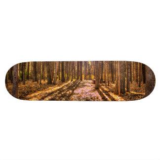 Light in the Forest Skateboard