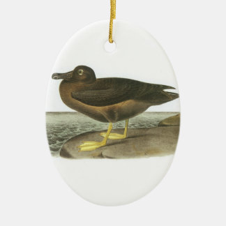 Light-mantled Sooty Albatross by Audubon Christmas Ornament
