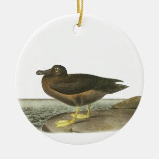 Light-mantled Sooty Albatross, John Audubon Christmas Ornaments
