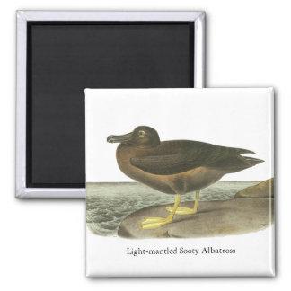 Light-mantled Sooty Albatross, John Audubon Fridge Magnets