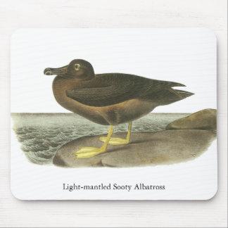 Light-mantled Sooty Albatross, John Audubon Mouse Pads