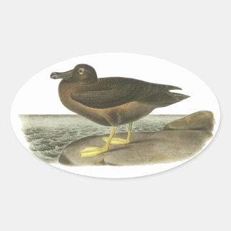 Light-mantled Sooty Albatross, John Audubon Oval Stickers