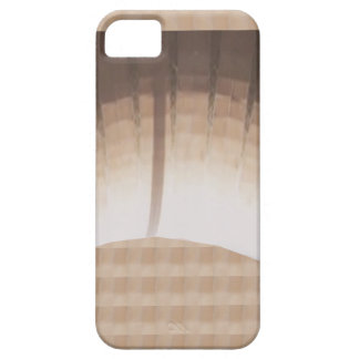 Light n Shades show from Church Lighting gifts iPhone 5 Covers