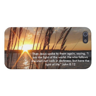 Light of the World Case 1 iPhone 5/5S Covers