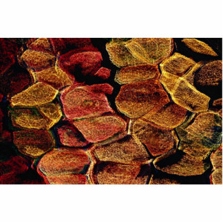 Light pattern photo cut out