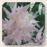 Light Pink Astilbe Flowers Cork Coasters