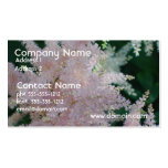 Light Pink Astilbe Flowers on Business Cards