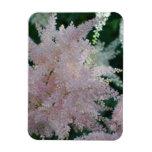 Light Pink Astilbe Flowers Premium Magnet Vinyl Magnets