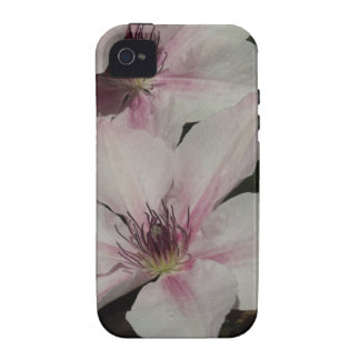Light Pink Clematis Blossom iPhone 4/4S Case