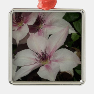 Light Pink Clematis Blossom Silver-Colored Square Decoration