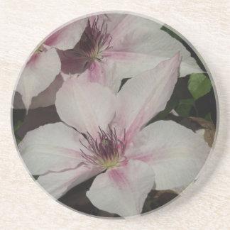 Light Pink Clematis Blossom Drink Coaster