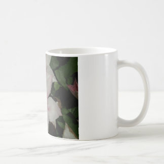 Light Pink Clematis Blossom Mug