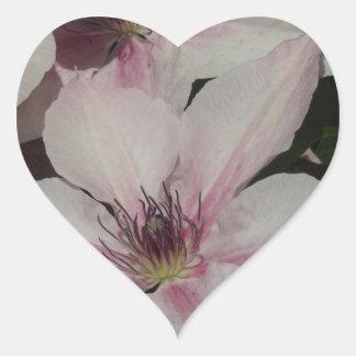 Light Pink Clematis Blossom Heart Sticker