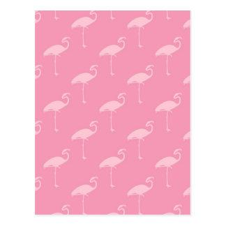 Light Pink Flamingo Tropical Flamingos Postcard